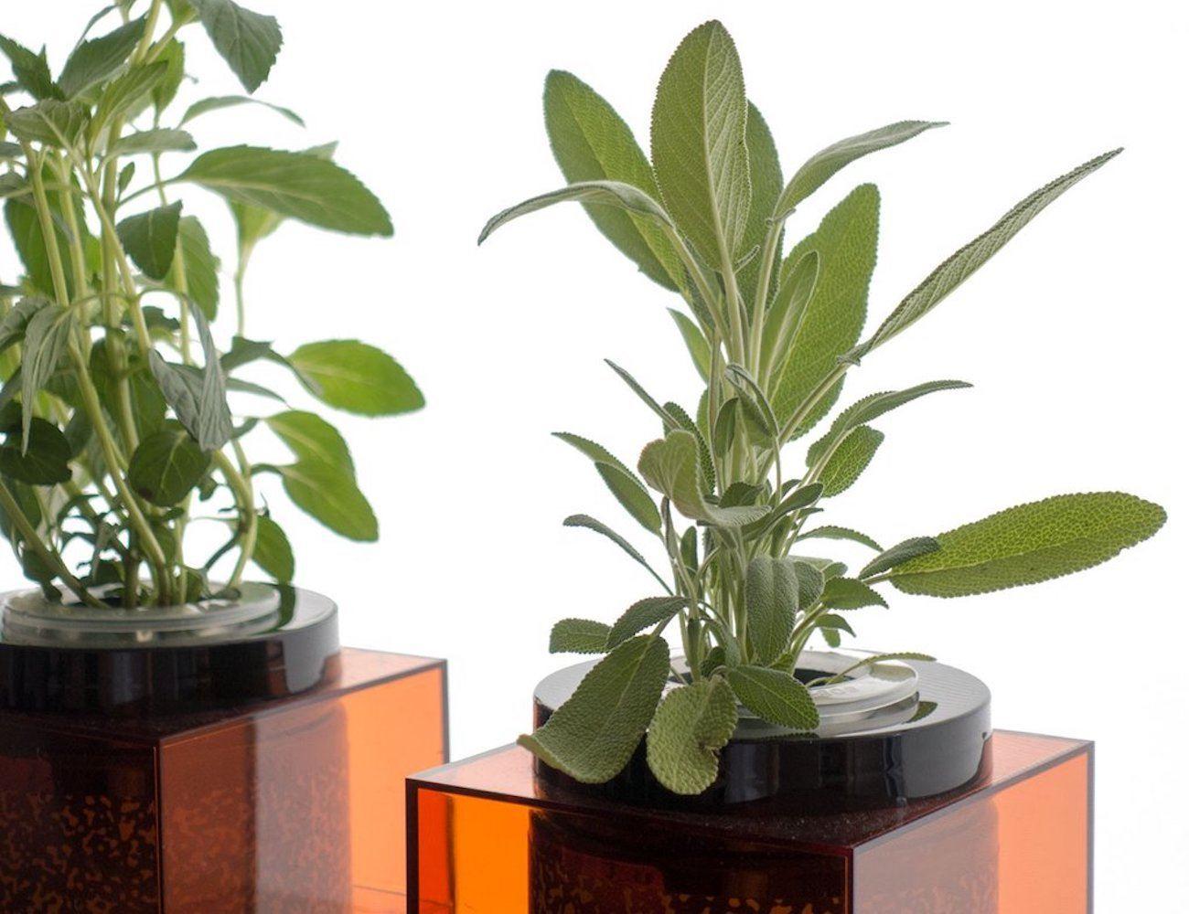 Futurefarms Spacepot Hydroponic Planter