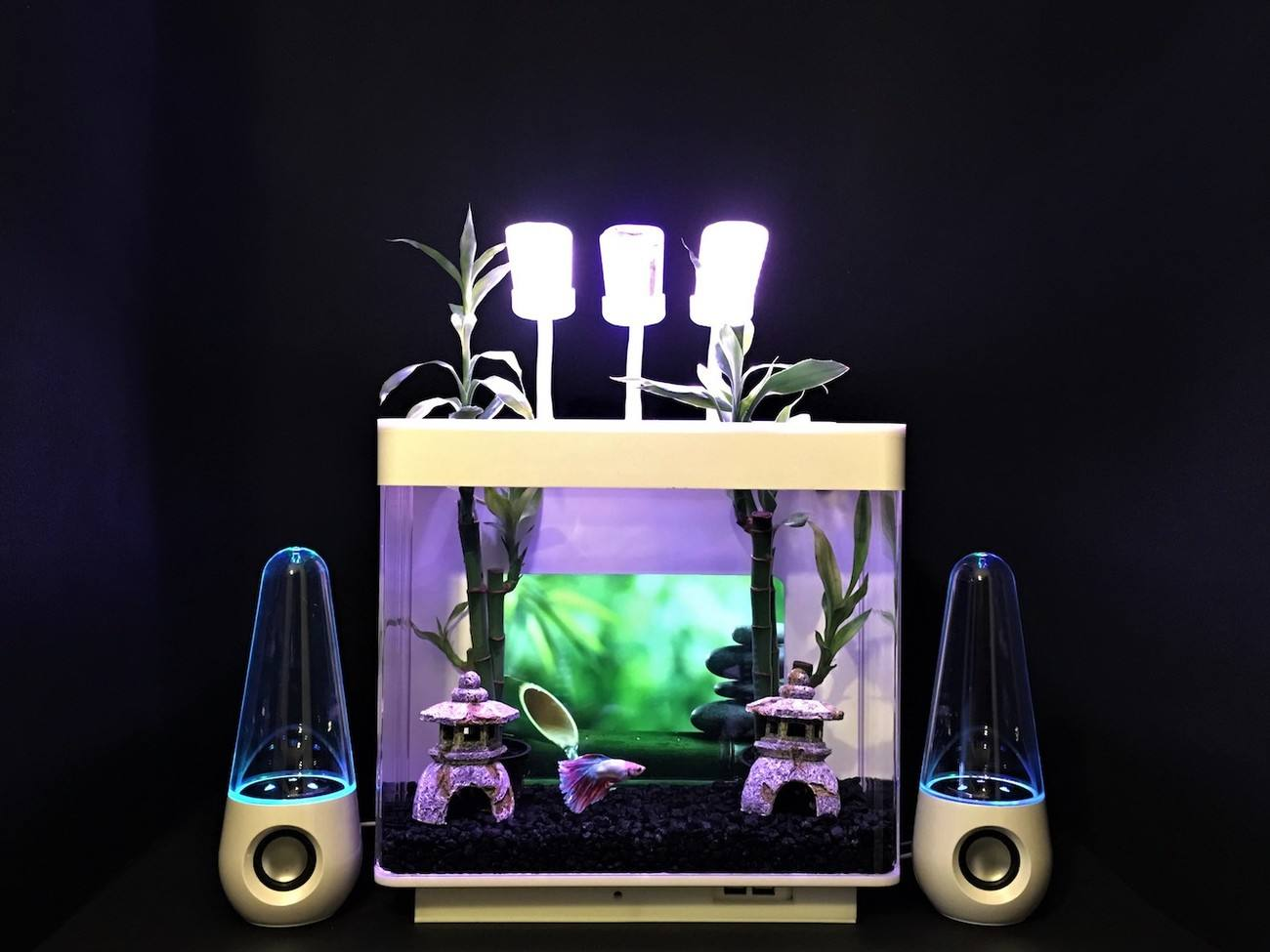 IQUARIUM i3G Tablet Backdrop Aquarium