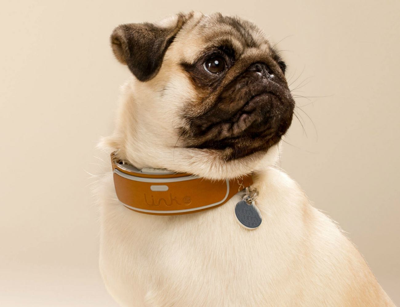 LINK AKC Intelligent Dog Collar