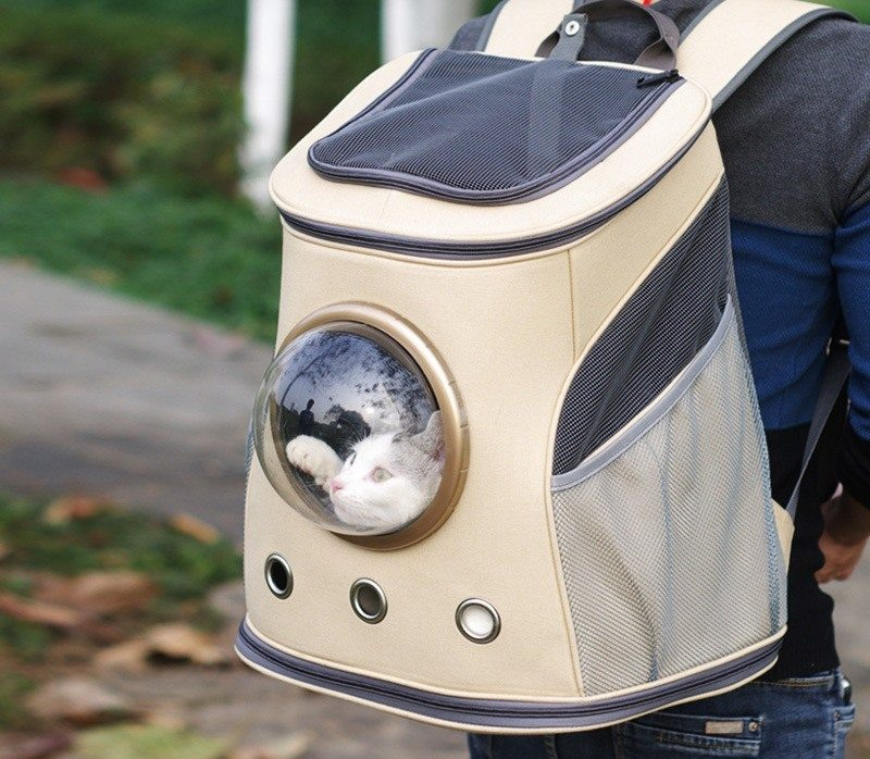 Space-Themed Pet Carrier