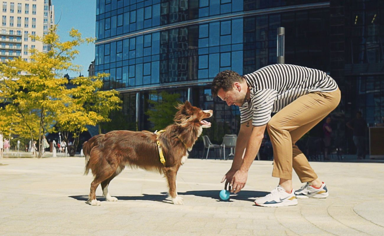 Bringy Smart Dog Ball