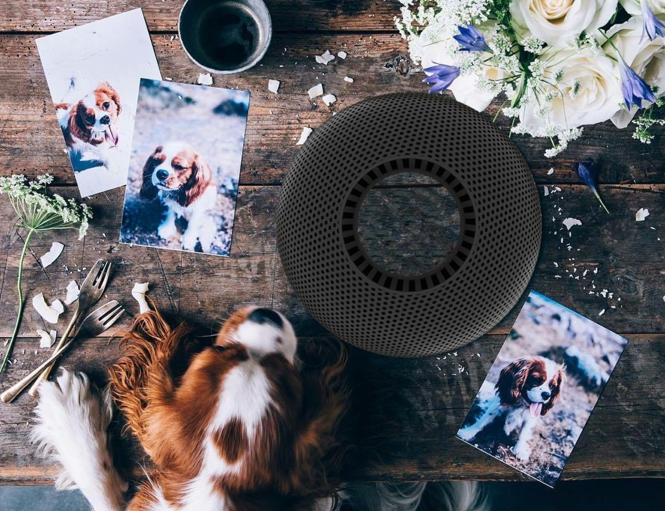 ORION360 AI-Powered Speaker System with ATMOS