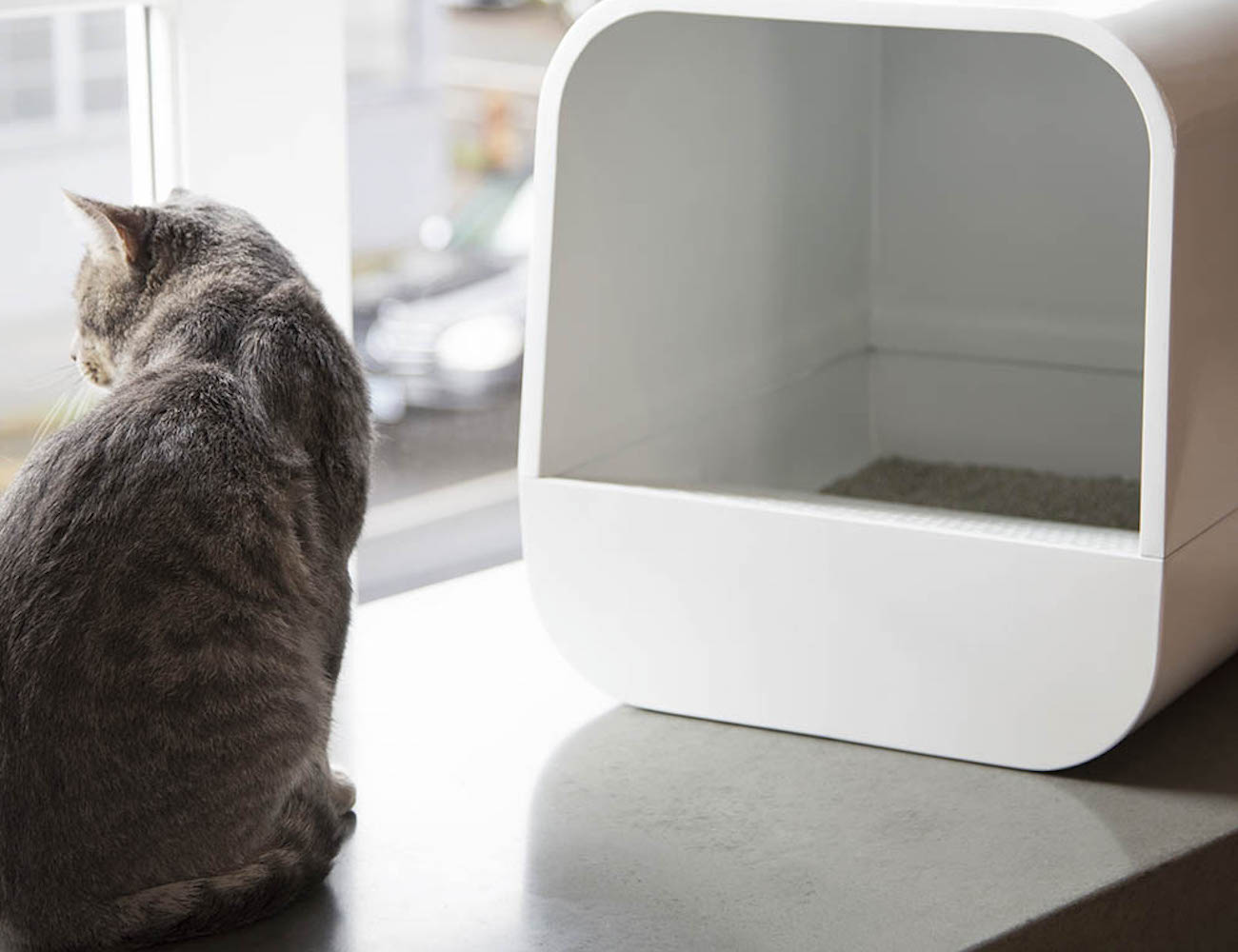 Grand PooBox Modern Litter Box