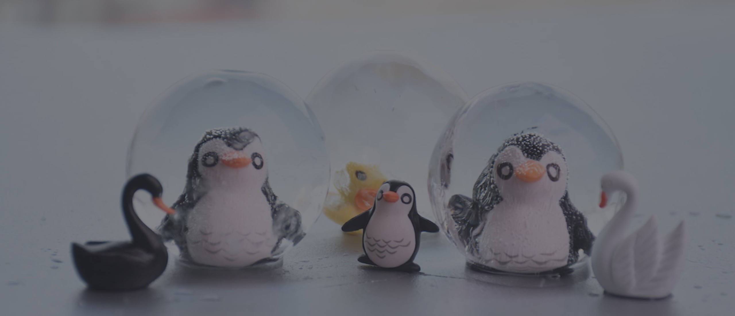 Polar Ice Ball 2.0 Spherical Ice Maker