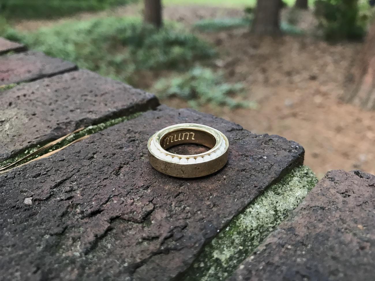 Vinci Ring Discreet and Elegant Fidget Spinner