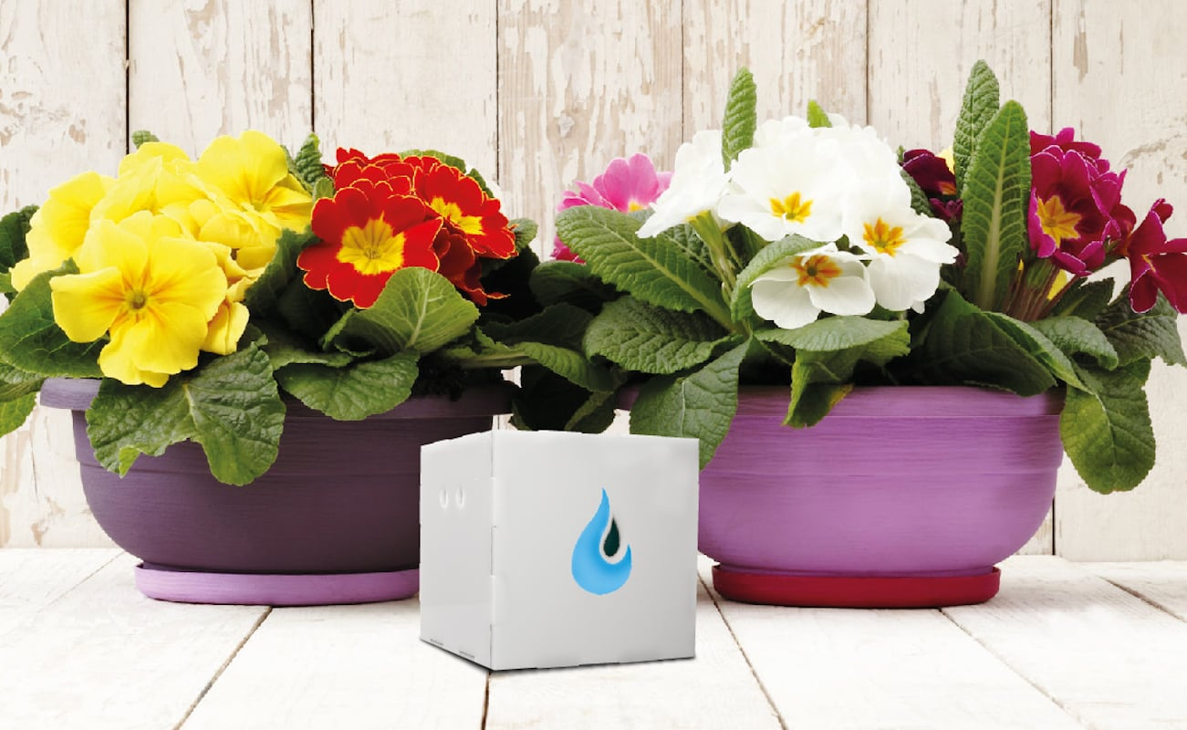 AquaFons Automatic Plant Watering Device