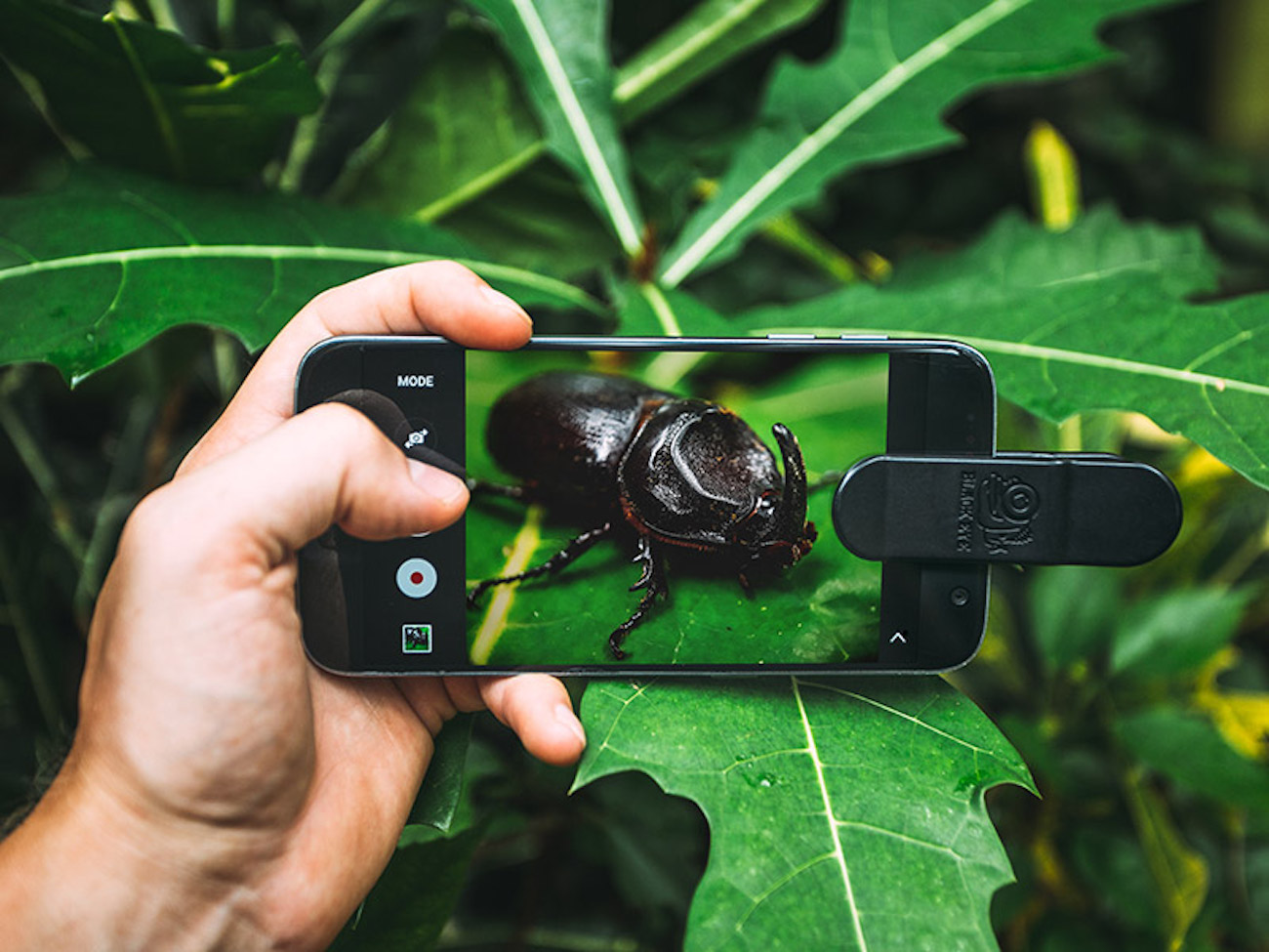 Black Eye Pro Kit Smartphone Lens Clips