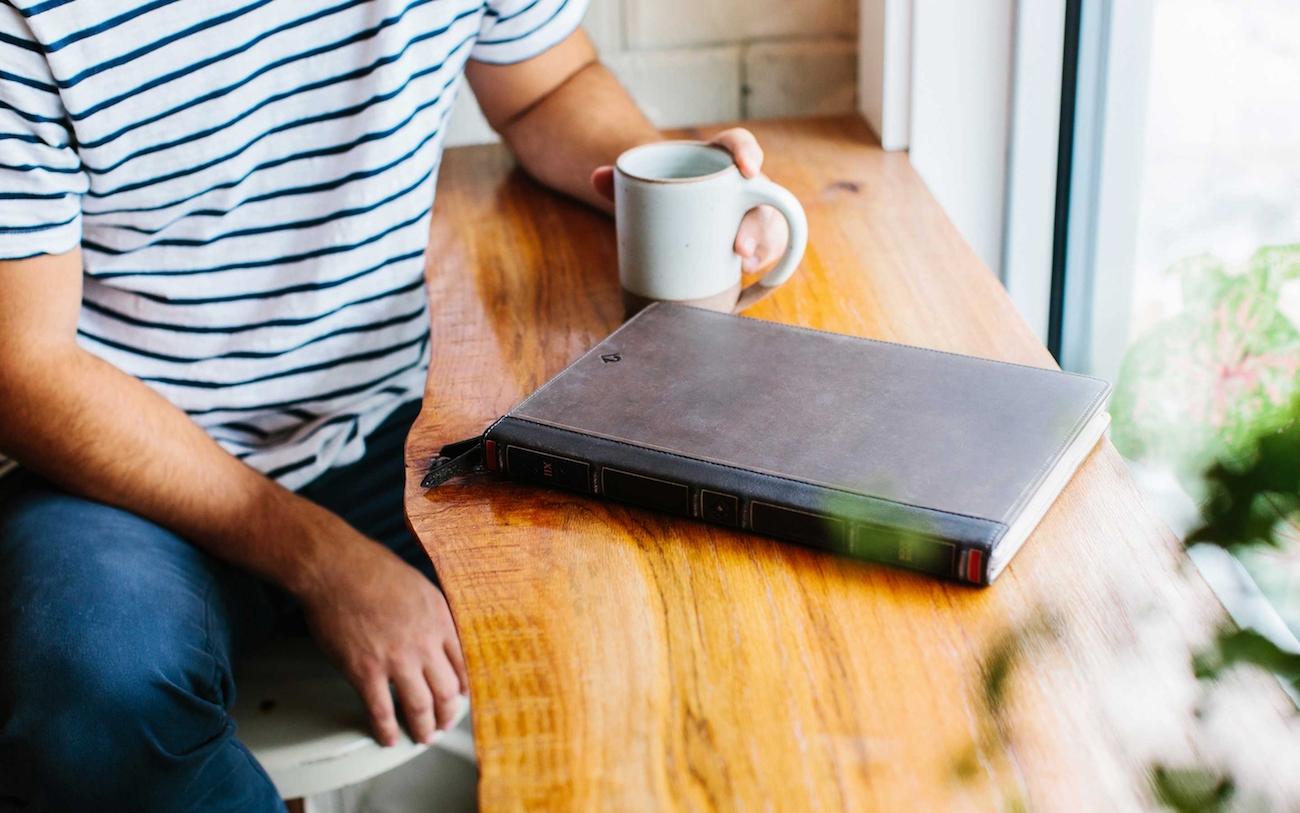 BookBook Vol. 2 Concealing MacBook Sleeve