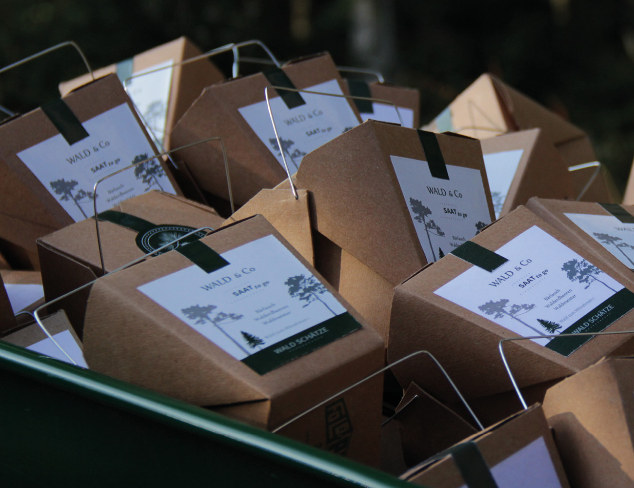 Forest Treasure Wild Seed Box