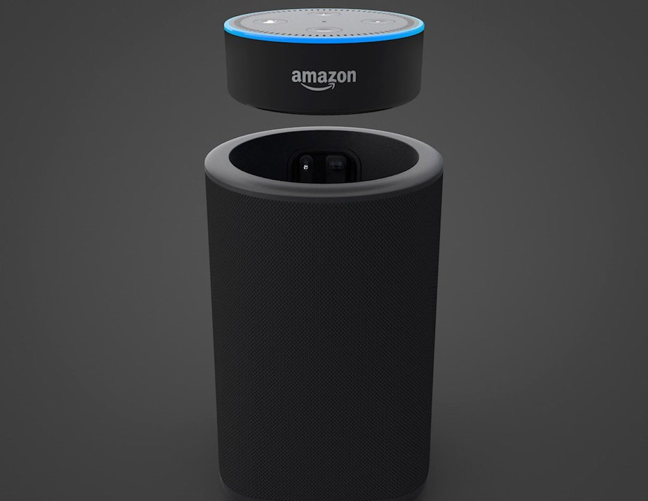 VAUX Portable Amazon Echo Dot Battery Speaker