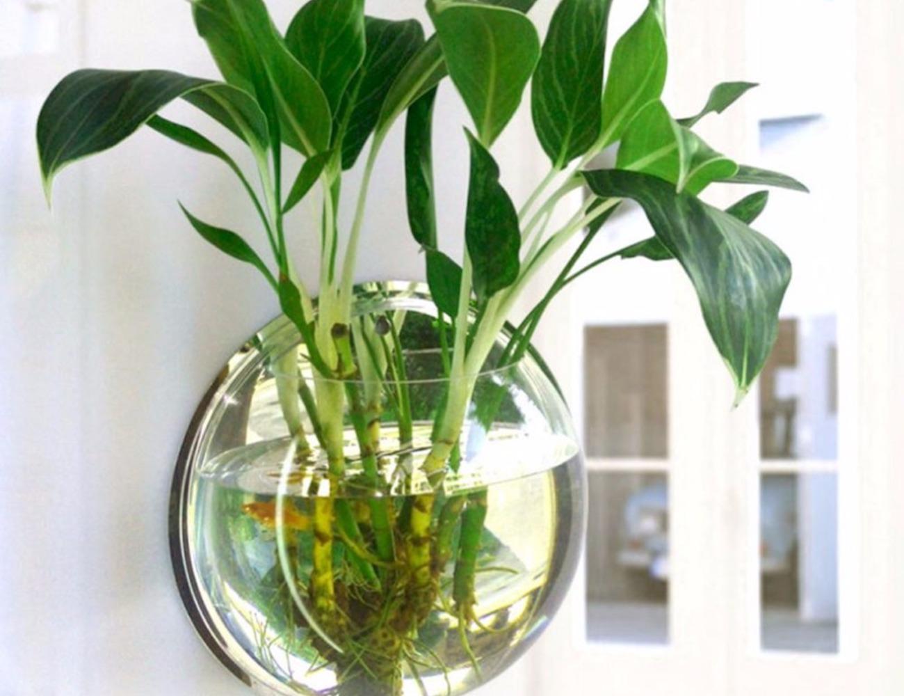 Wall Mounted Plant Pot