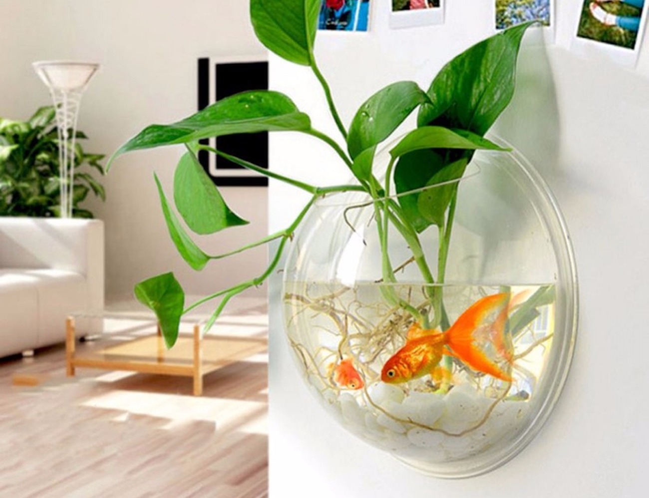 Wall Mounted Plant Pot