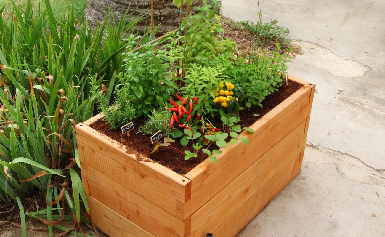 haut potager innovative kitchen garden gadget flow