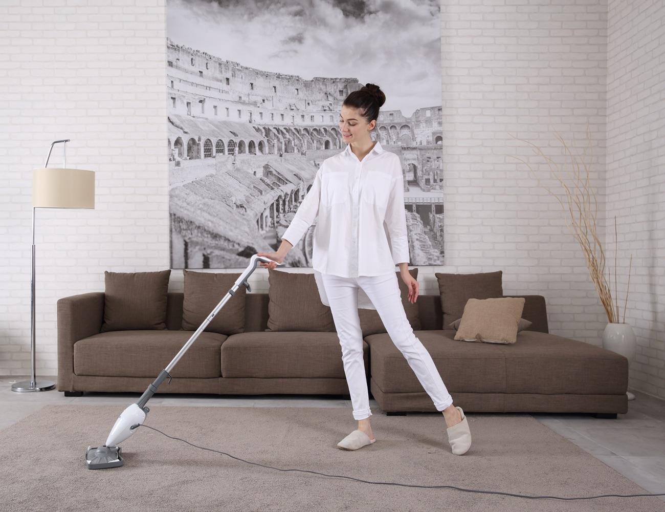 Light 'n' Easy Sanitizing Steam Mop