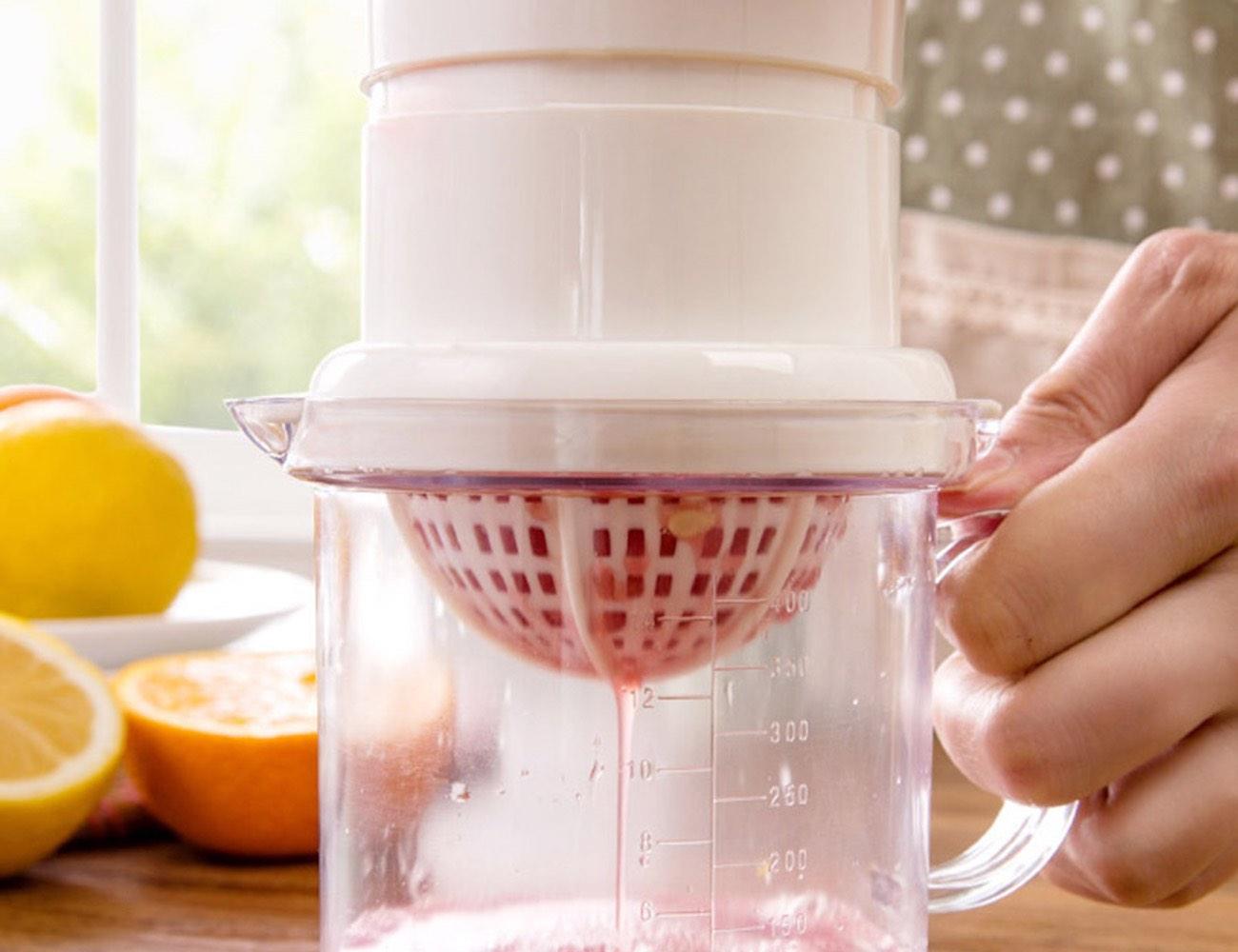 Mini Homemade Fruit Juicer