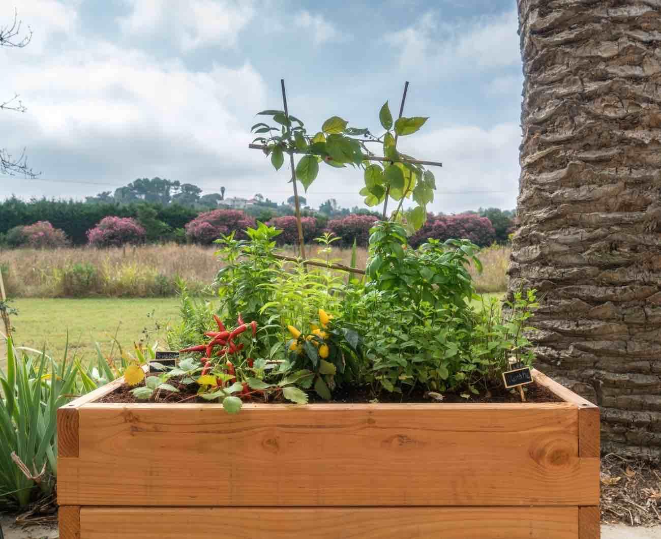 The Innovative Haut Potager Kitchen Garden Will Make You Crave Veggies