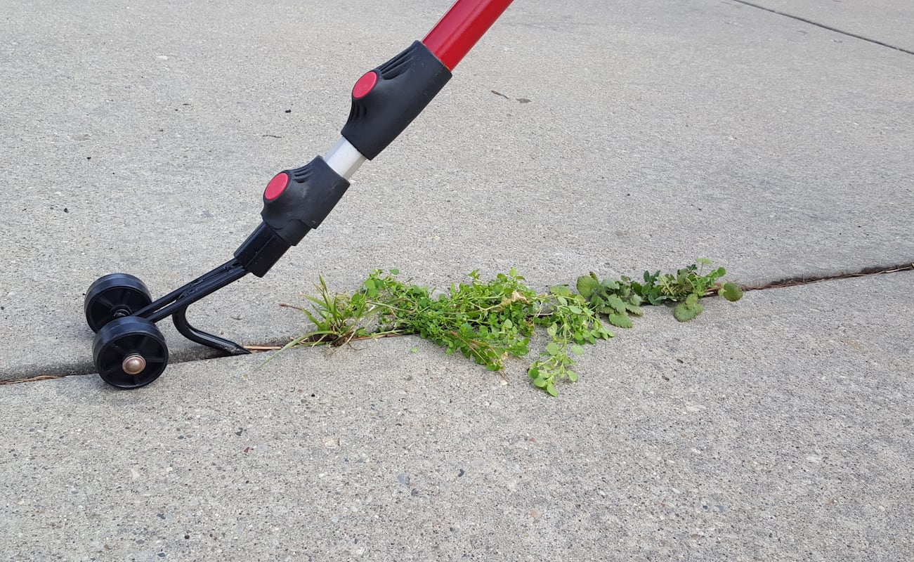 Weed+Snatcher+Crevice+Weeding+Tool
