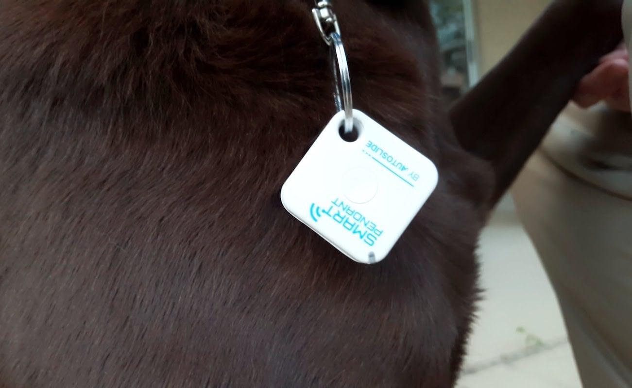 Autoslide Smart Tag Pet Door Kit