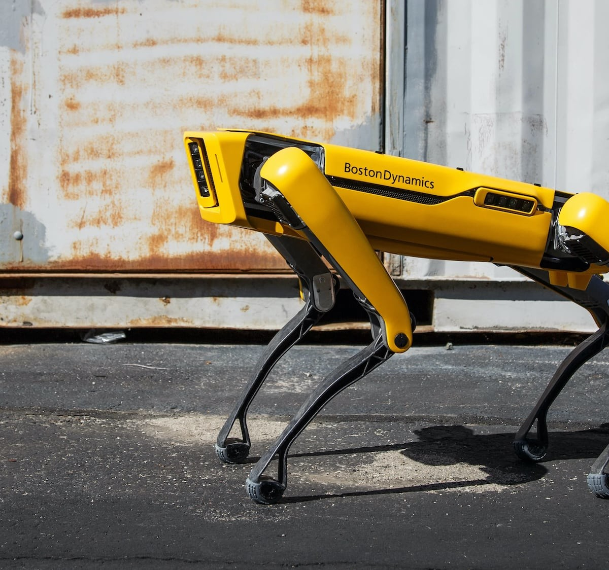 Boston Dynamics Spot Intelligent Robot Dog is a flexible tool for developers