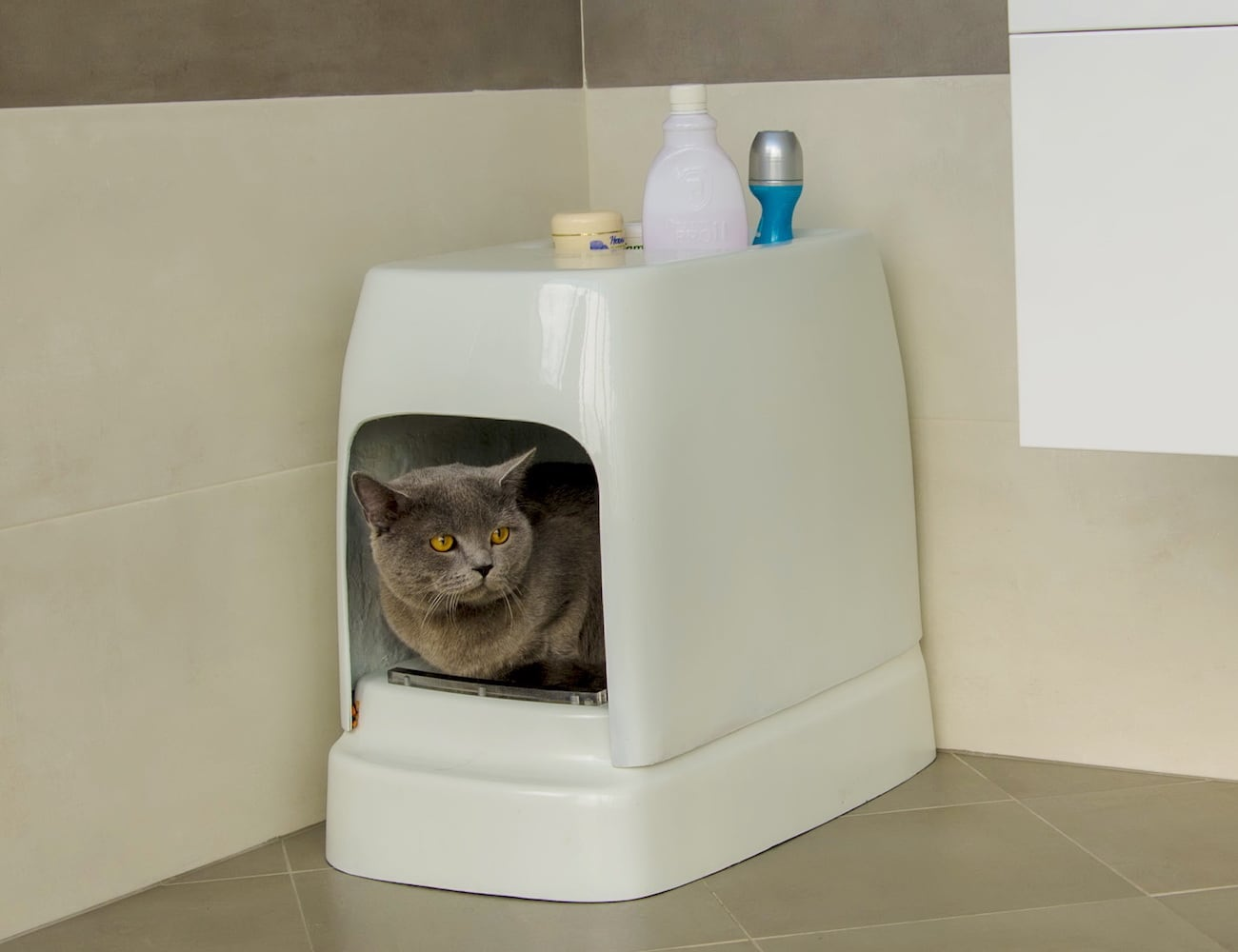 Automatic Cat Litter Box Toilet