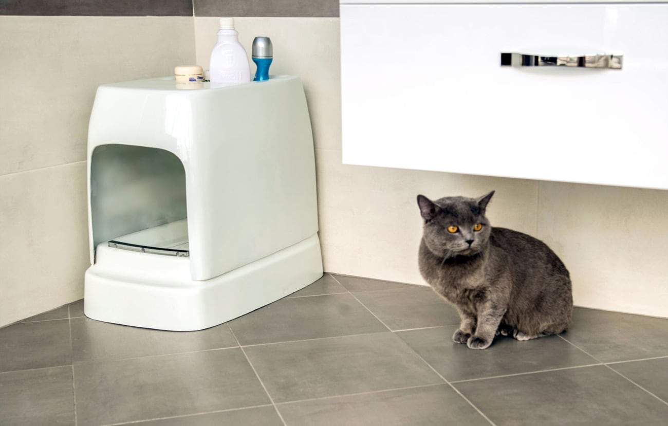 Coupons for automatic litter box