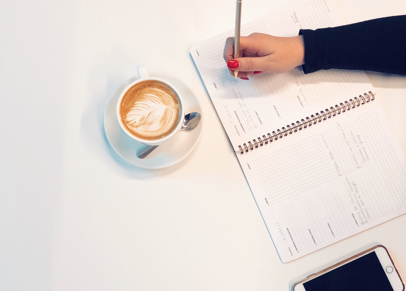 ZerCareer Everyday Visionary Planner