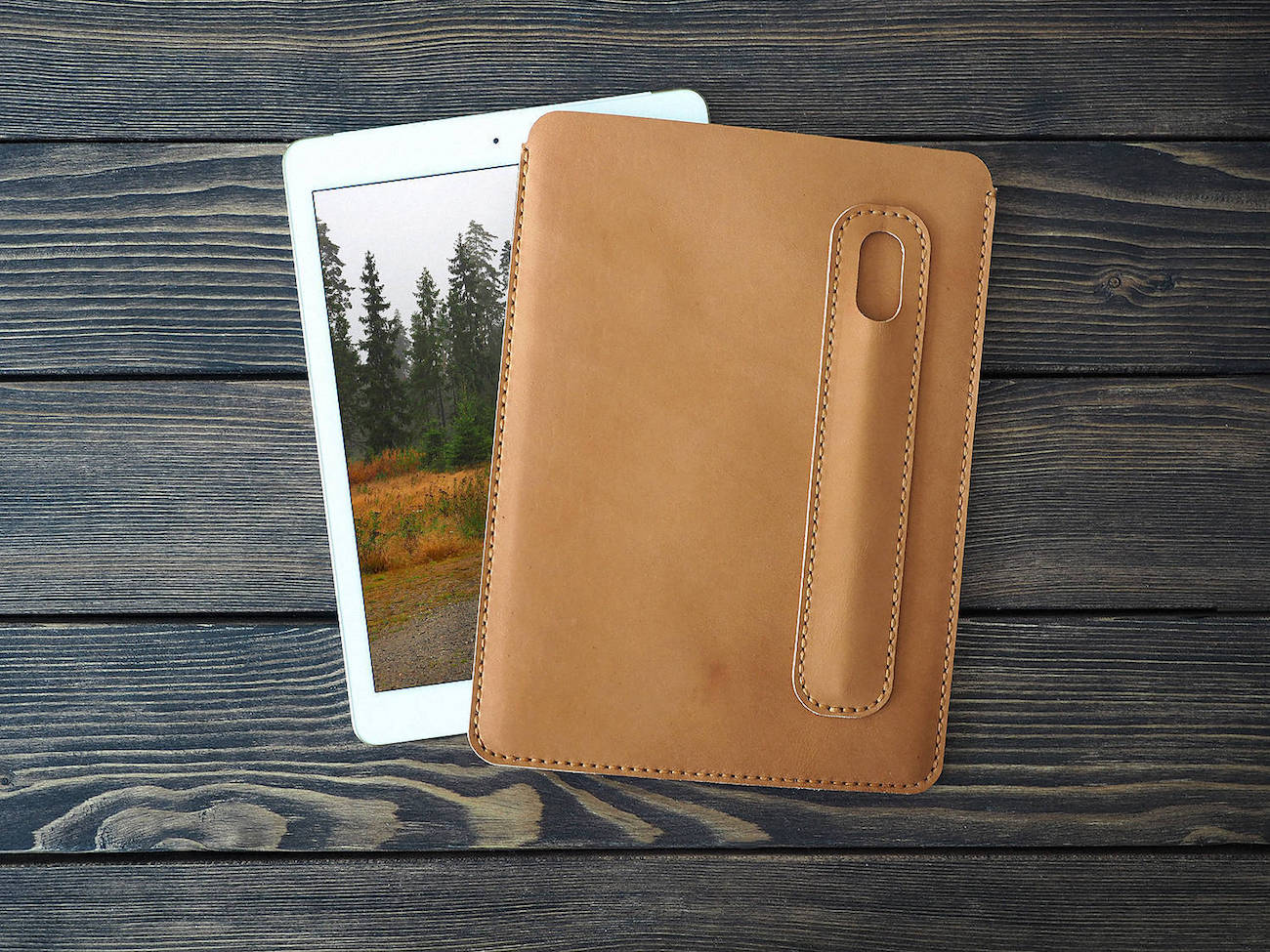 Leather iPad Pro Apple Pencil Case