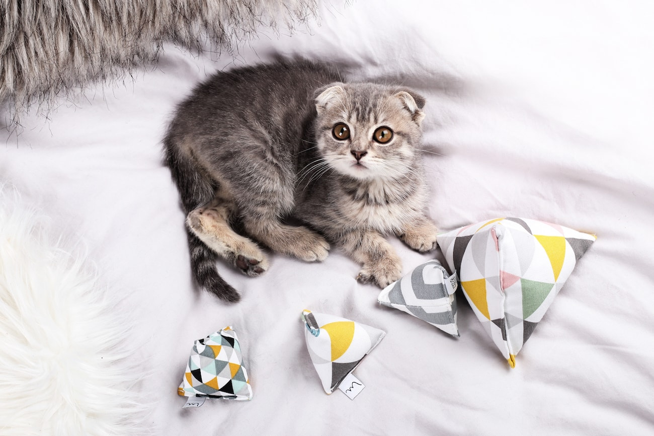 Minoumi+Handmade+Catnip+Cat+Toys