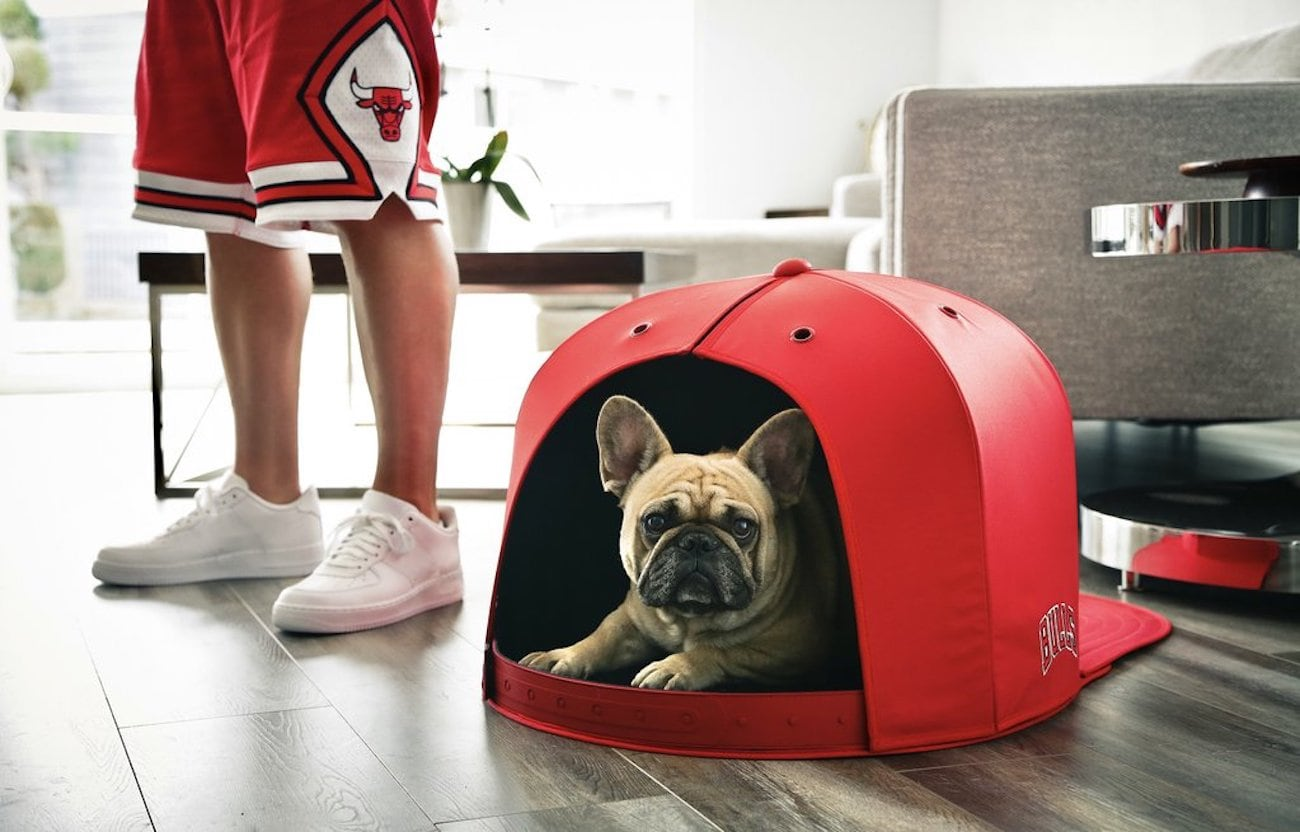 260a0233120a3e The caps come in small, medium or large, to accommodate a range of pooch  sizes. For now they're only available for NBA teams, although the company  says ...