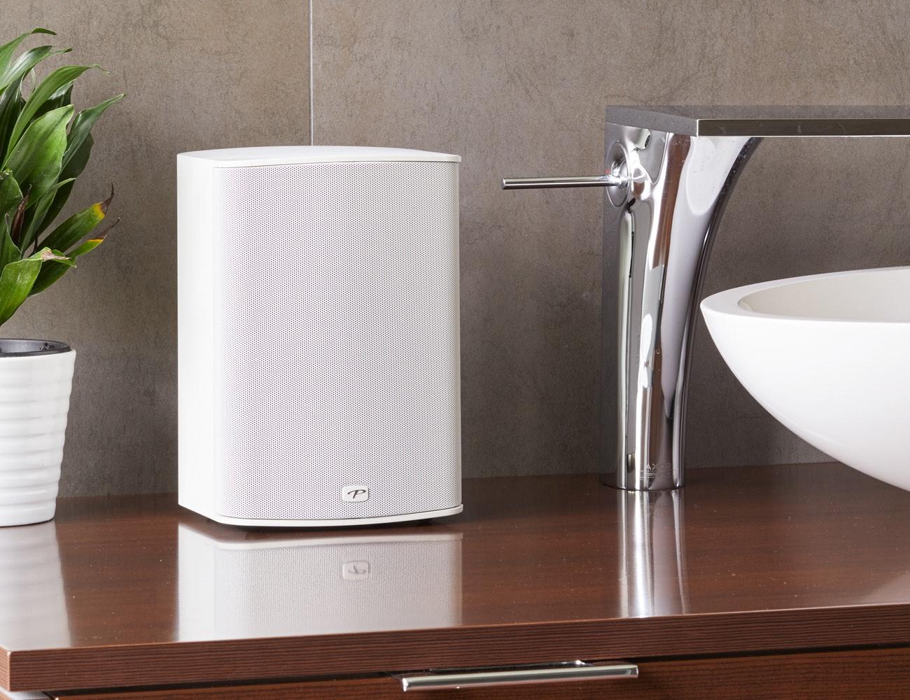 Paradigm Premium Wireless 300 Compact Speaker