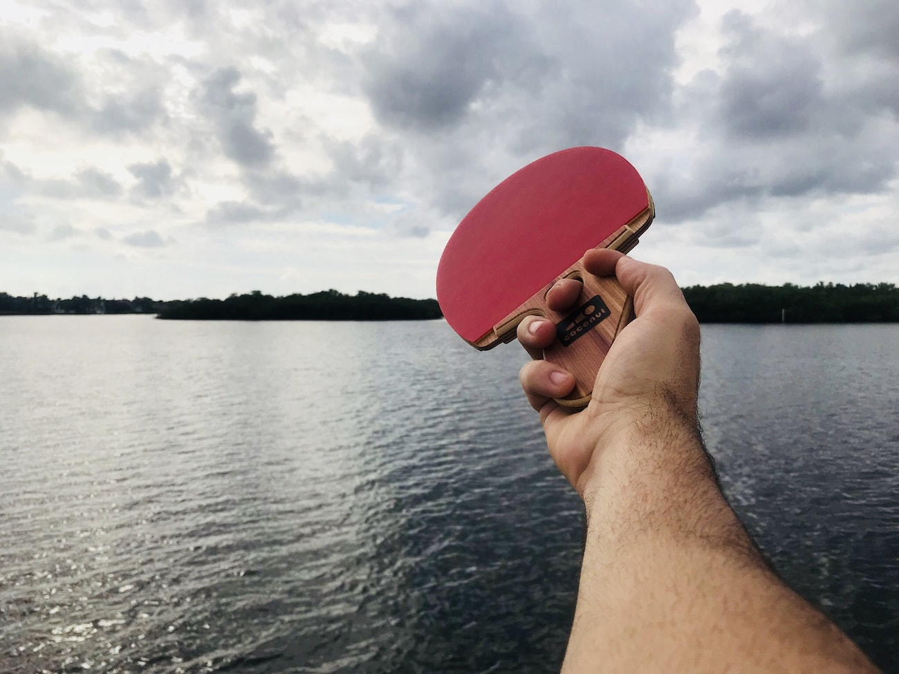 Table Tennis Coconut Paddle V2