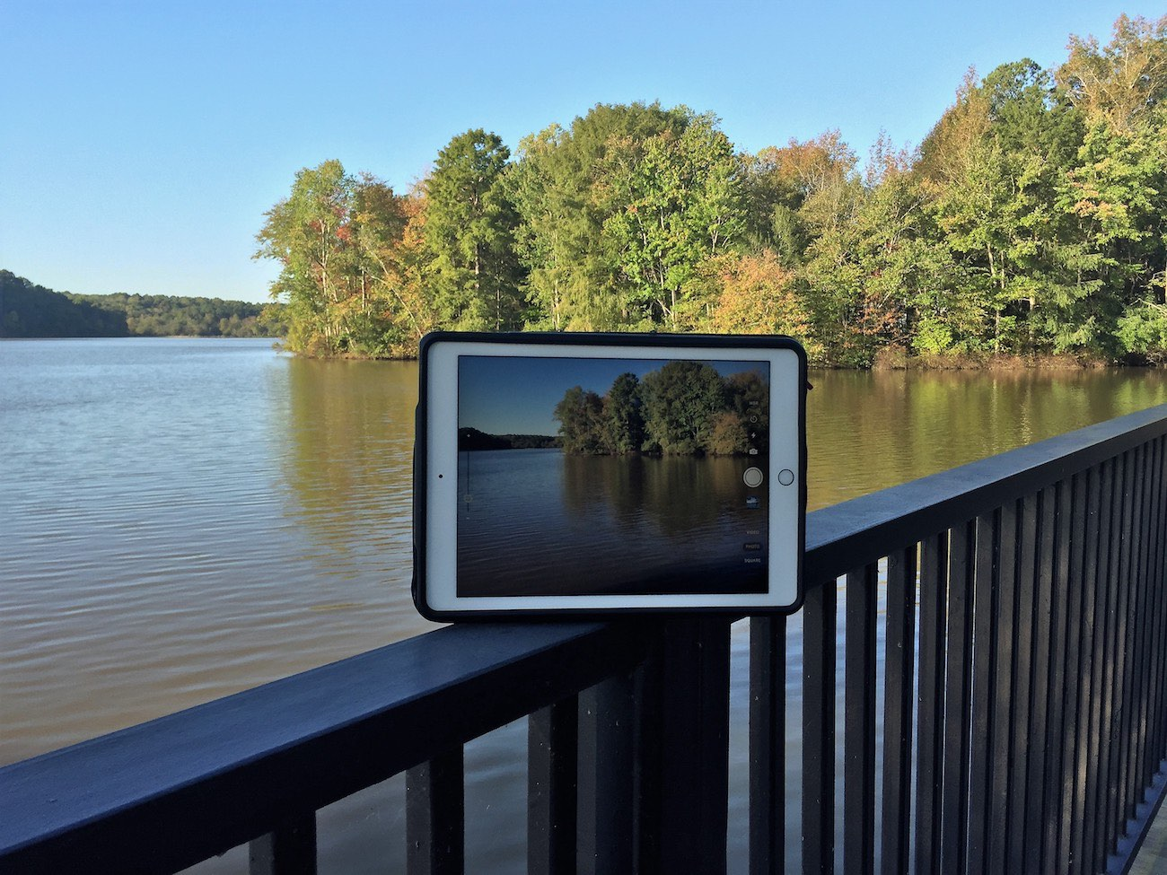 ZYP 2-in-1 Adjustable iPad Stand and Case