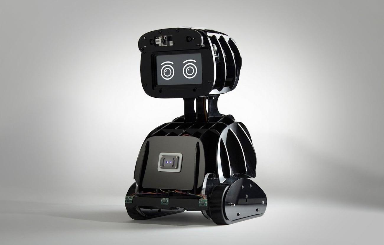 Misty 1 Developer Robot