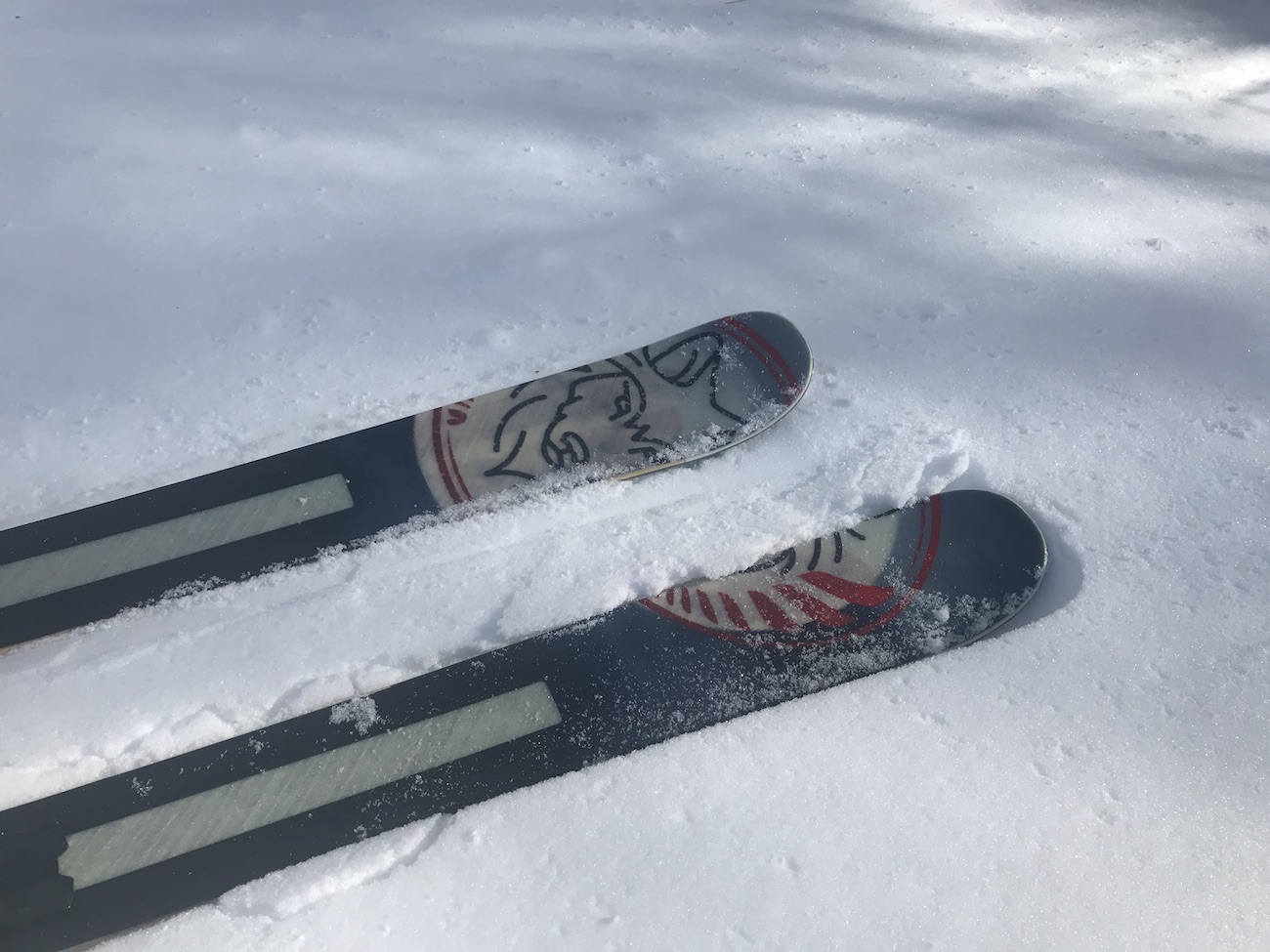 Verispellis Skis Bluetooth Adjustable Skis