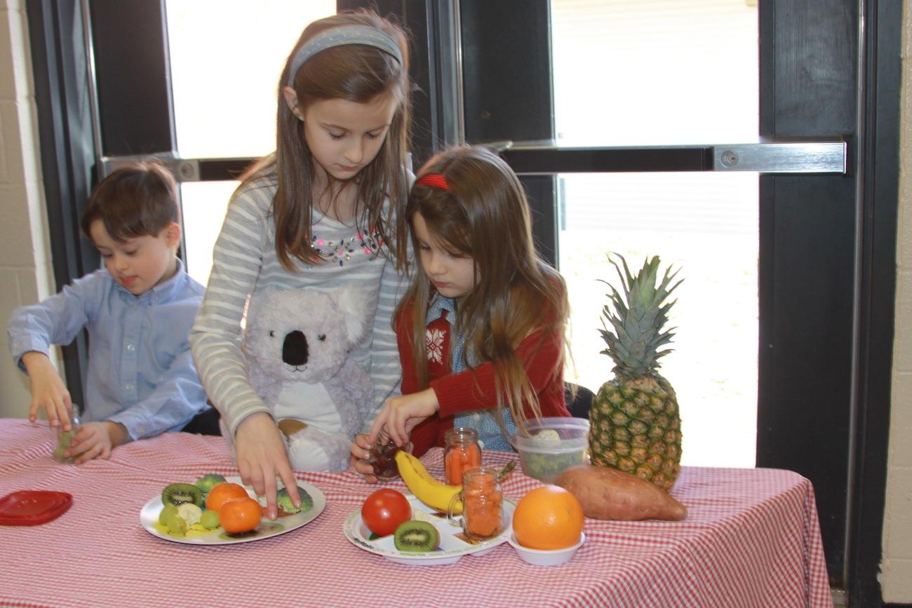 Kiwi The Koala Kids Nutrition Kit