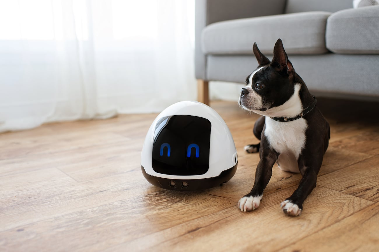 MIA Interactive Pet Robot