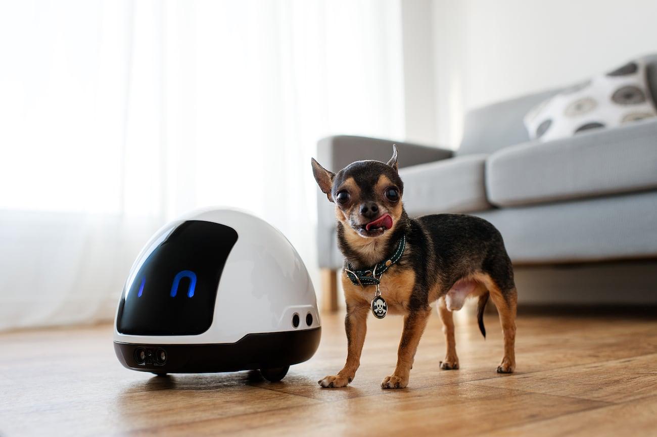 MIA Interactive Pet Robot