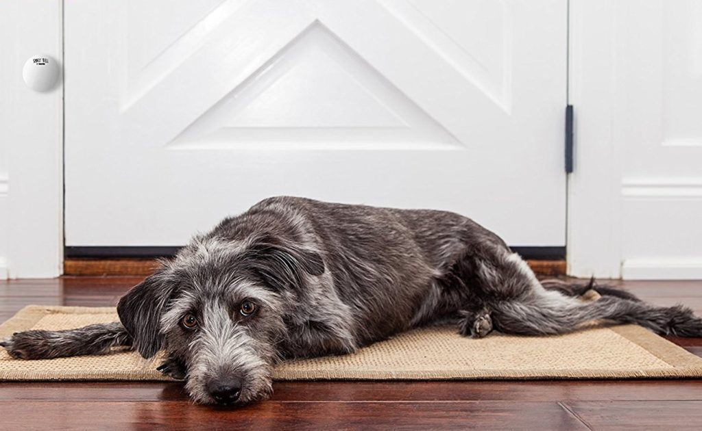 Mighty Paw Dog Smart Bell