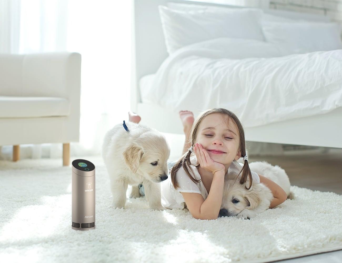 OMCARE Portable Air Purifier