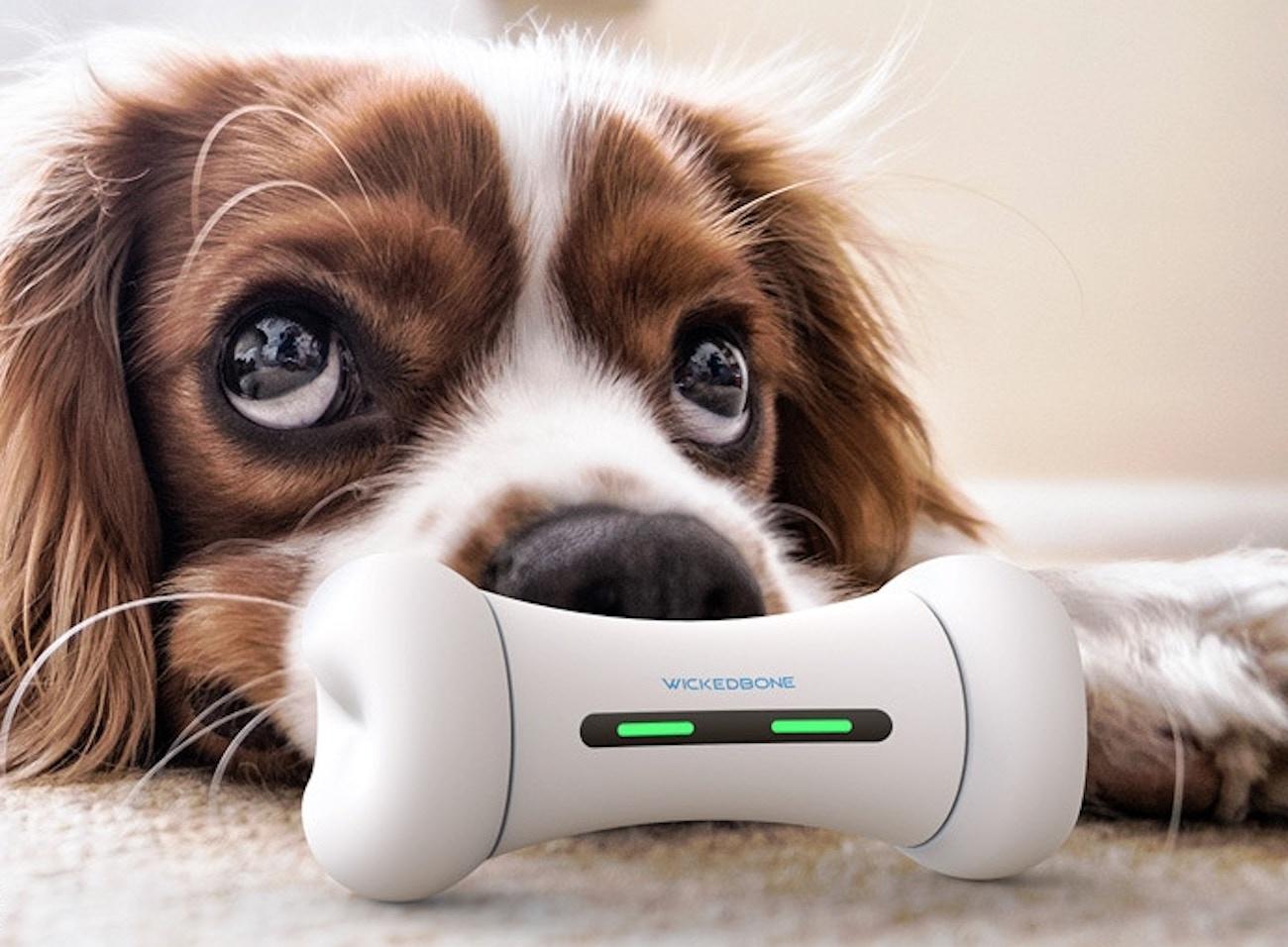 Wickedbone Smart Interactive Dog Toy