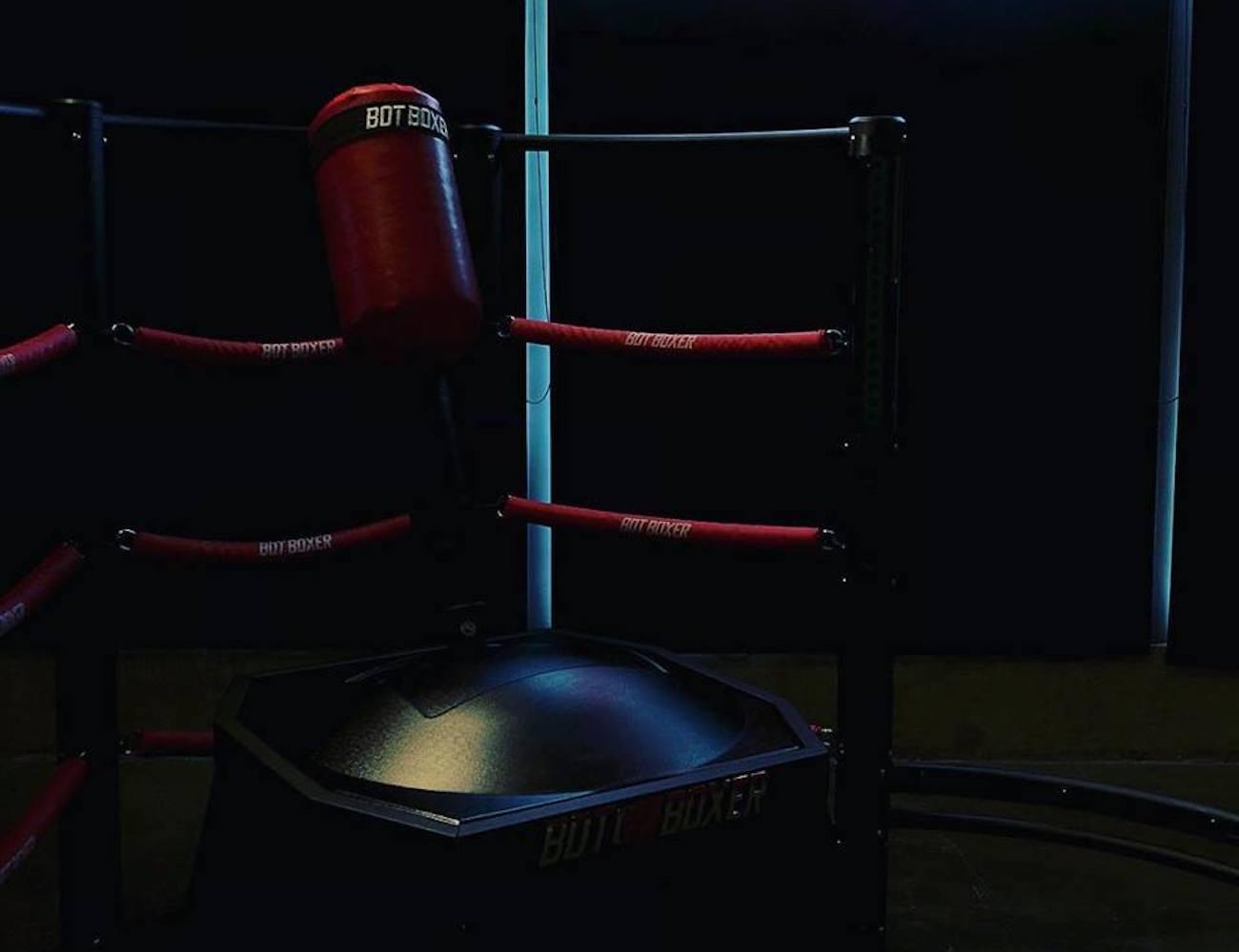 BotBoxer Robotic Punching Bag