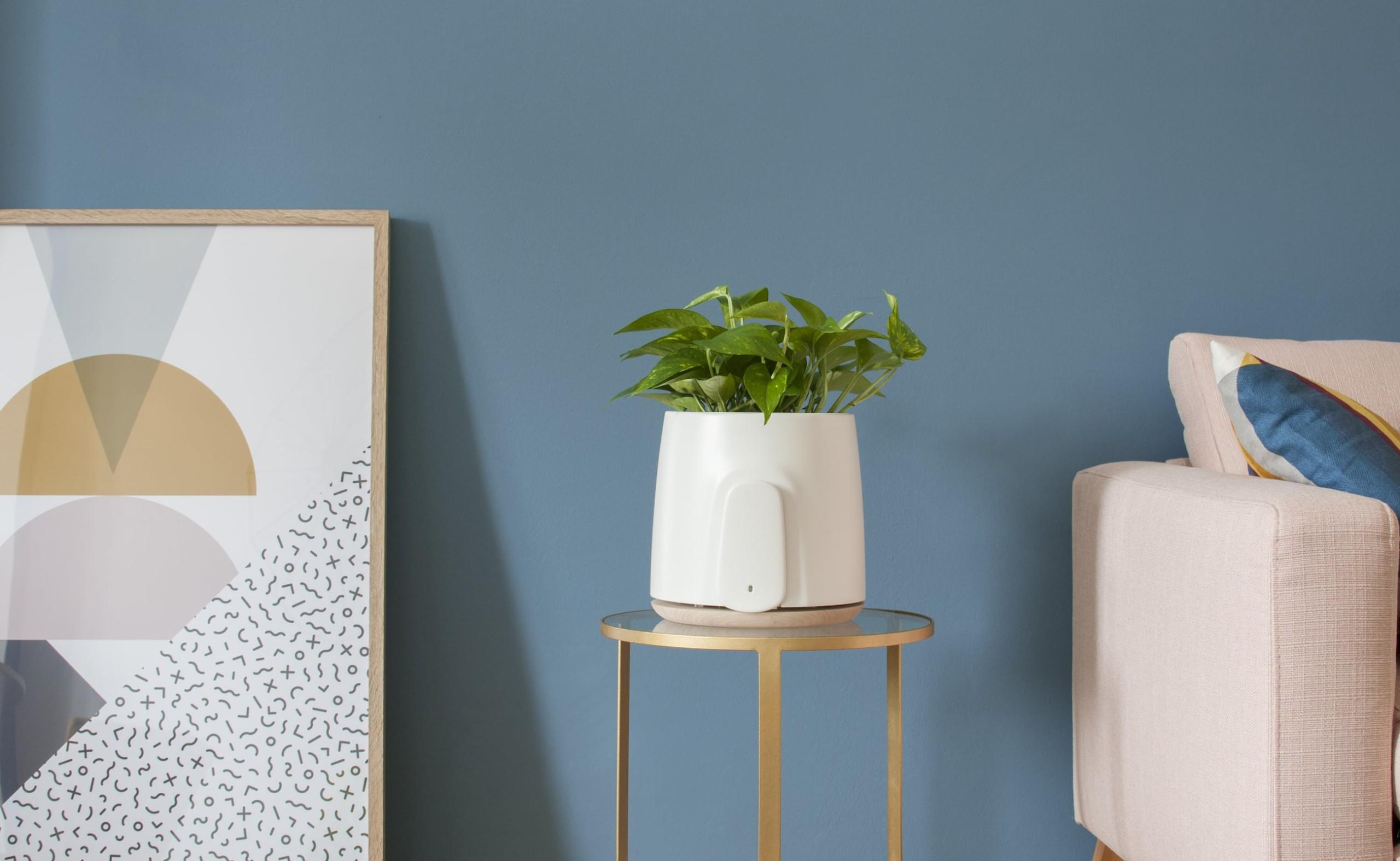 Sensors @Home - cover