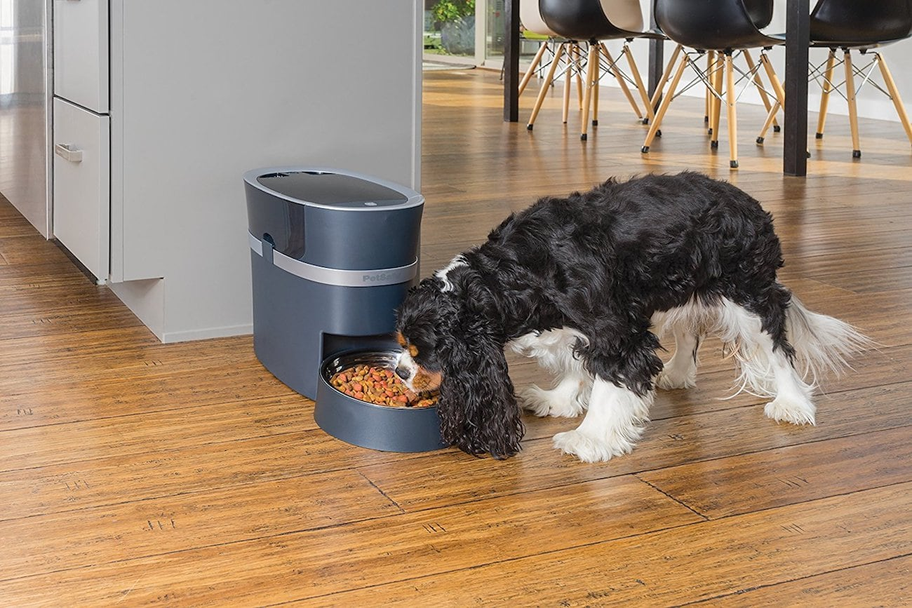 PetSafe Smart Feed Automatic Pet Feeder