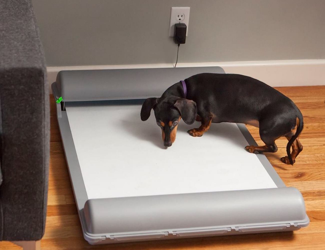 BrilliantPad Self-Cleaning Dog Pad