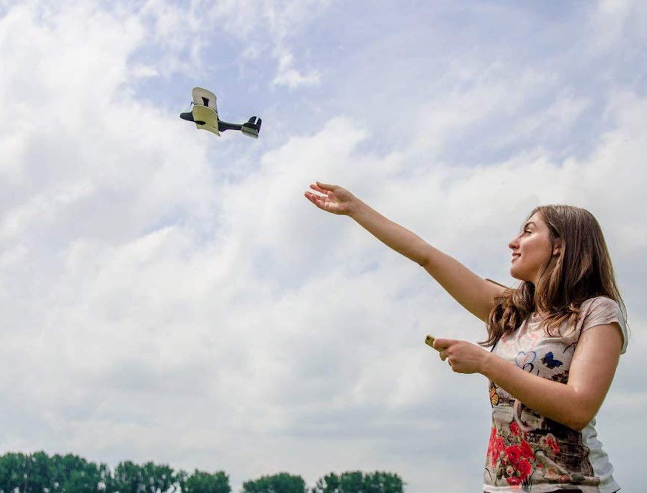 Moskito Remote Controlled Plane