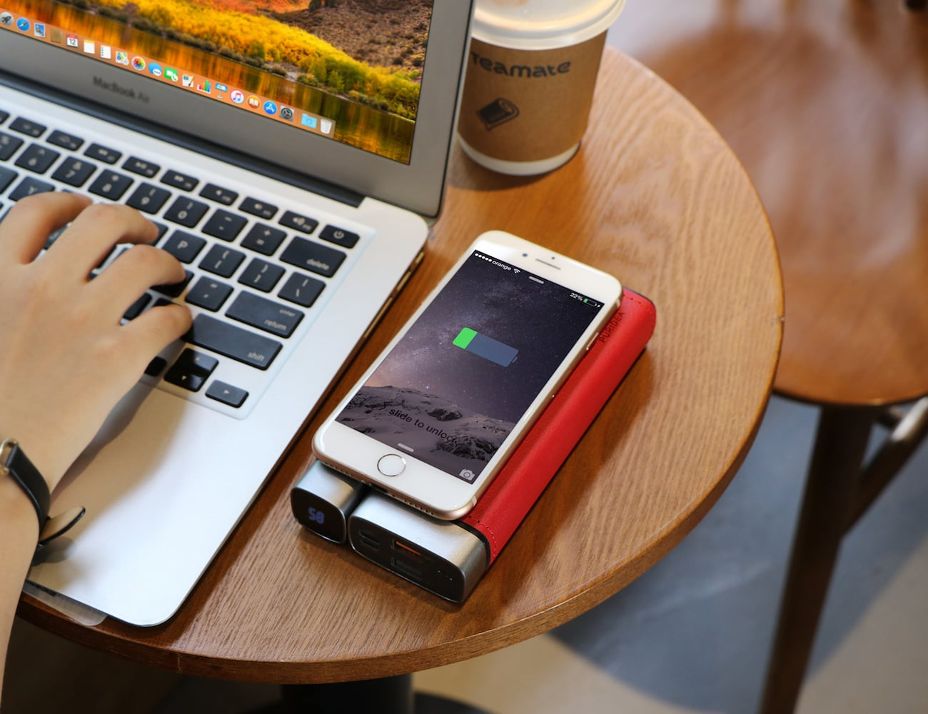PURIDEA Pro X Wireless Fast Charging Power Bank