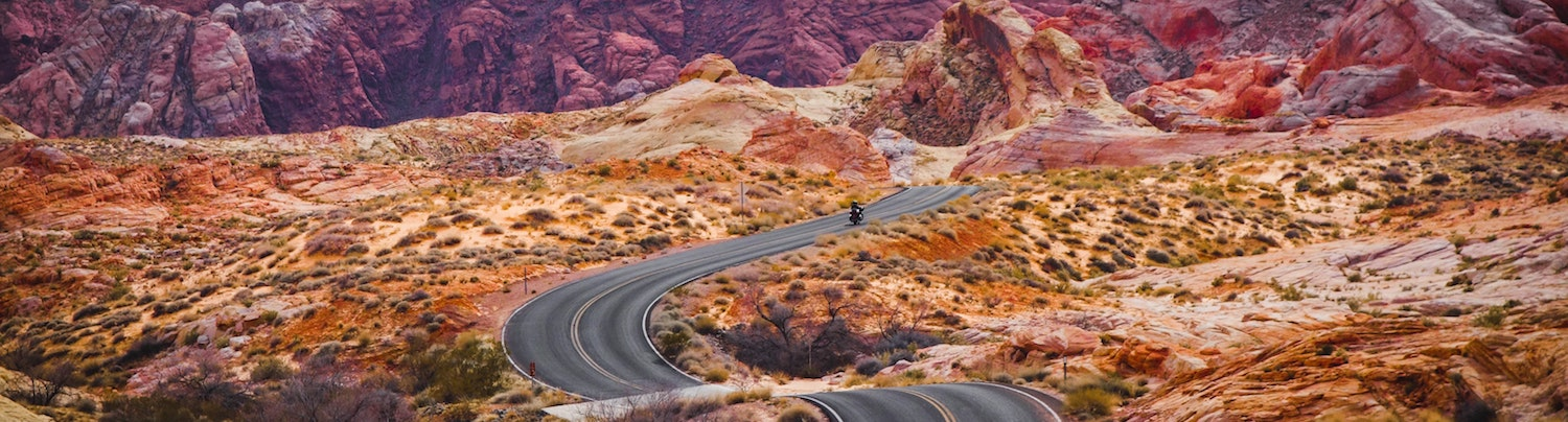 10 road trip essentials that you need to pack