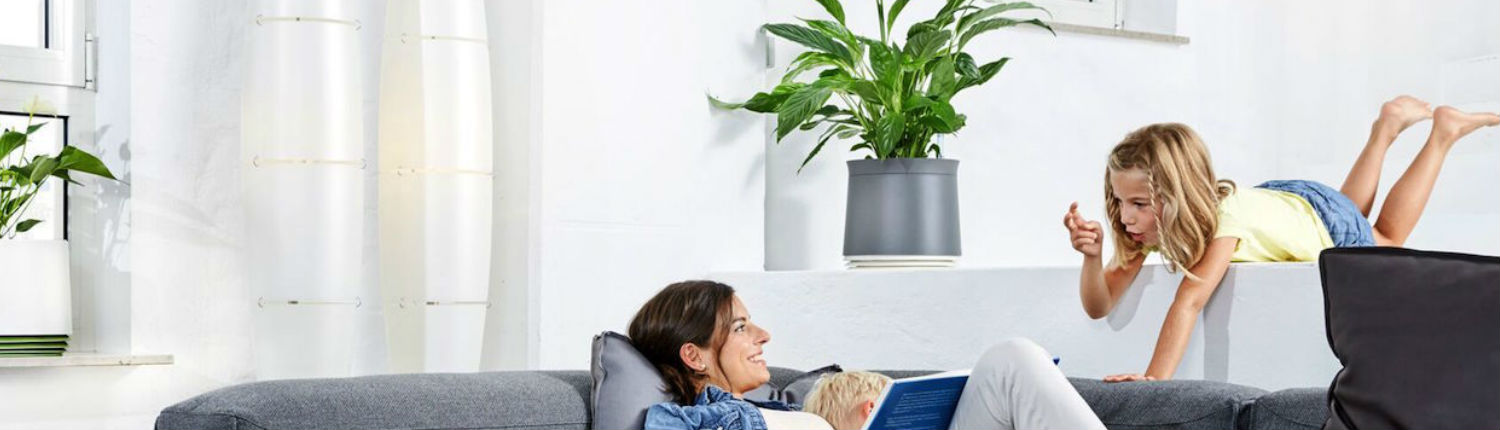 5 Smart planters that clean the air around you