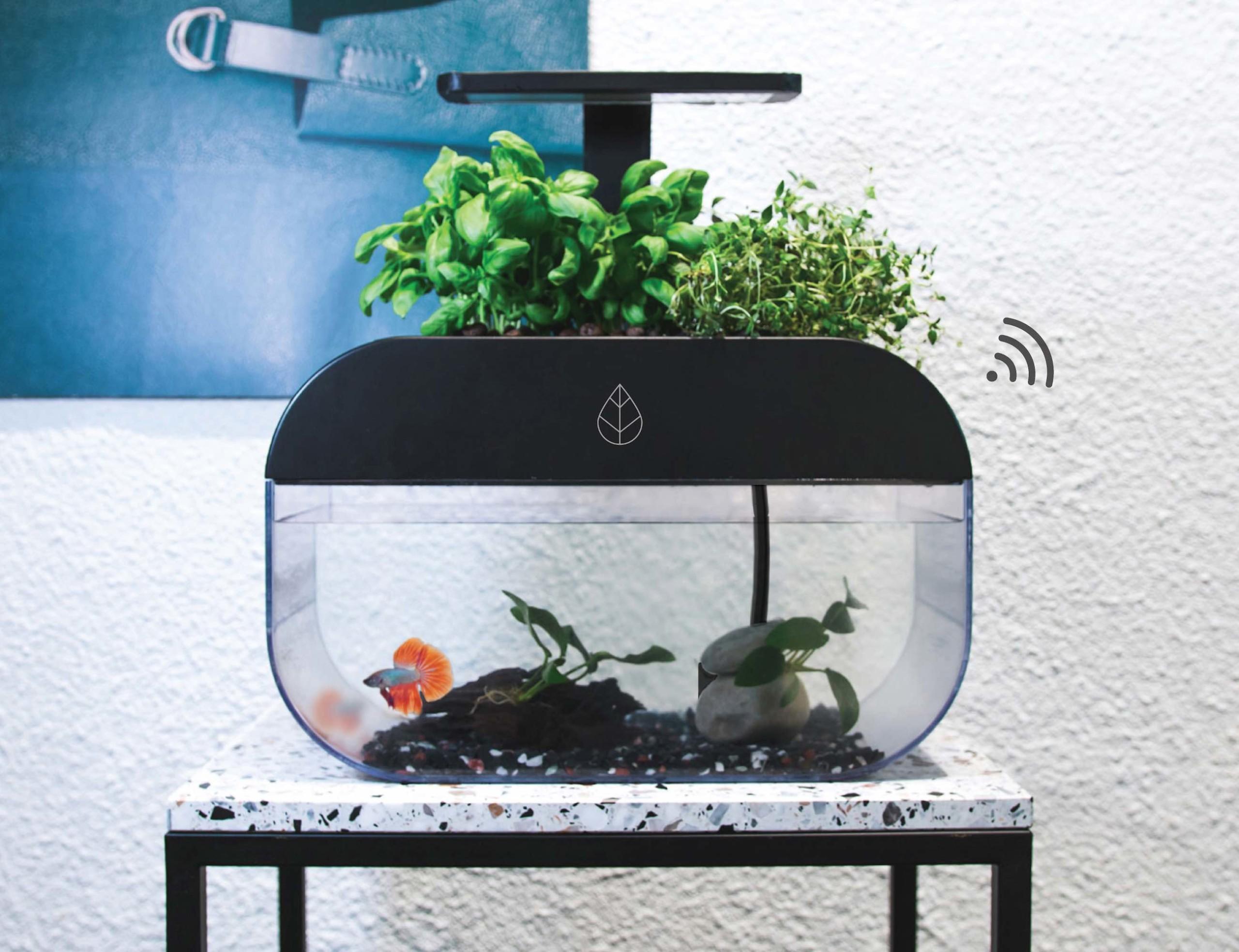 EcoGarden Smart Interactive Ecosystem