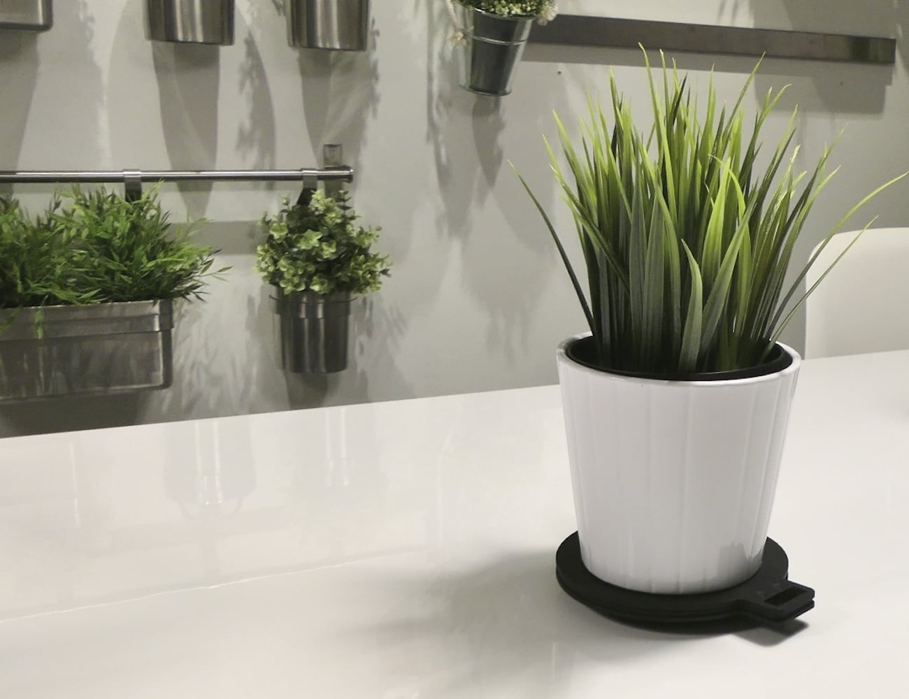 WATERME! Talking Plant Care Coaster